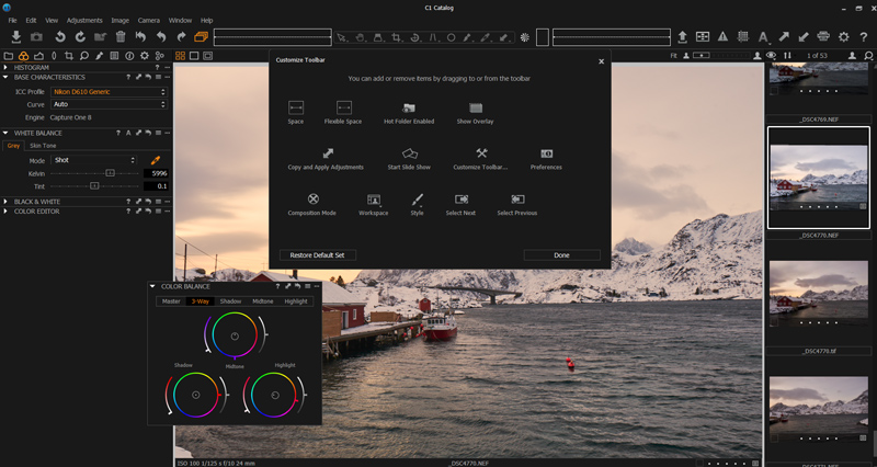 Capture One - interface