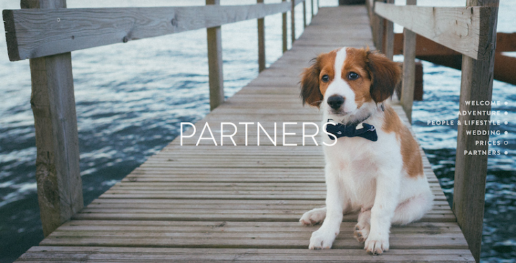 Partnerit