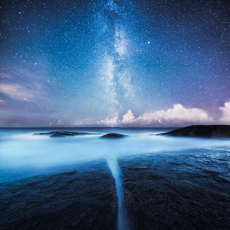 Mikko-Lagerstedt-Divided_small